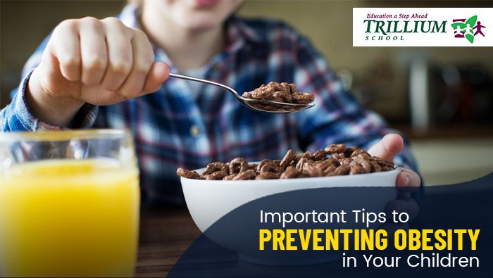 Important Tips to Preventing Obesity in Your Children